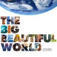 Logo de la radio The Big Beautiful World