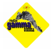 Logo of radio station Radio Gamma Gioiosa