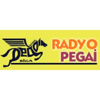 Logo of radio station Radyo Pegai