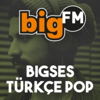 Logo of radio station bigSES