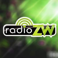 Logo of radio station Radio Ziemi Wieluńskiej