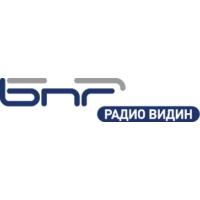 Logo of radio station Radio Vidin
