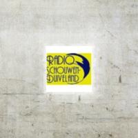 Logo of radio station Radio Omroep Schouwen Duiveland