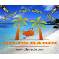 Logo of radio station Diles Radio