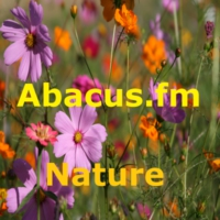 Logo of radio station Abacus.fm - Nature