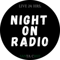 Logo de la radio Night On Radio