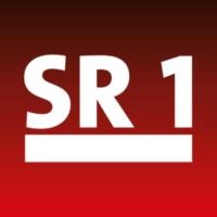 Logo of radio station SR 1 Lounge