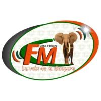 Logo de la radio La voix de la diaspora