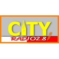 Logo of radio station Radiocity1028