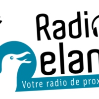 Logo of radio station Radio Goeland