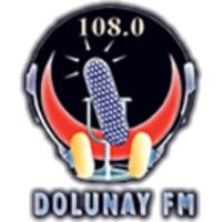 Logo de la radio Dolunay FM
