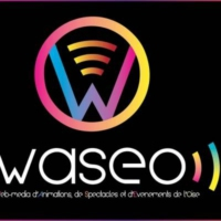 Logo of radio station WASEO