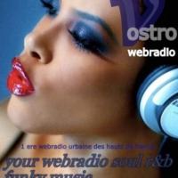 Logo of radio station Vostro webradio