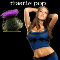 Logo de la radio Thistle Pop