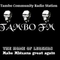 Logo of radio station TAMBO FM