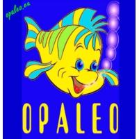 Logo of radio station OPALEO