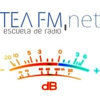 Logo de la radio TEA FM