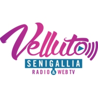 Logo of radio station Radio Velluto