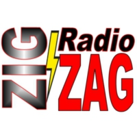 Logo of radio station Radio Zig Zag 102