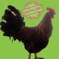 Logo de la radio Cachito FM