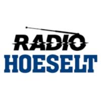 Logo of radio station Radio Hoeselt