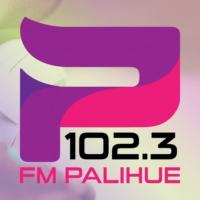 Logo de la radio FM Palihue 102.3