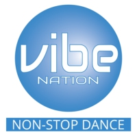 Logo of radio station Vibe Nation Radio