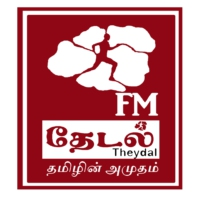 Logo of radio station Theydal FM