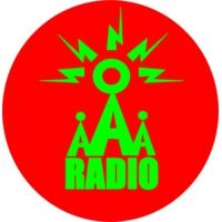 Logo of radio station Access All Aerials Radio