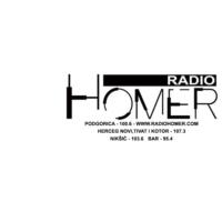 Logo of radio station Radio Homer