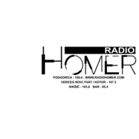 Logo of radio station Radio Homer