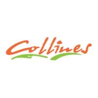 Logo of radio station Collines la Radio