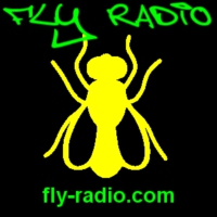 Logo of radio station Fly Radio