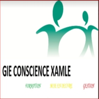 Logo de la radio Radio Conscience Xamle