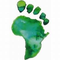 Logo de la radio RAO - Radio Africa Online