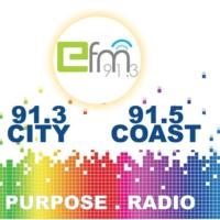 Logo of radio station Efm 91.3FM