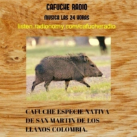 Logo of radio station cafuche radio