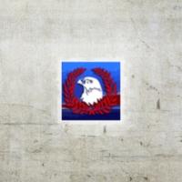 Logo de la radio Falcon FM