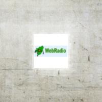 Logo de la radio Radio Lyngdal