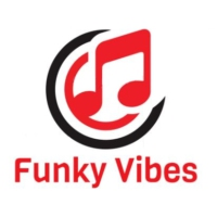 Logo of radio station Funky Vibes FM