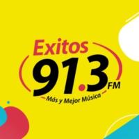Logo of radio station XHMLS Exitos 91.3 FM