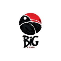 Logo of radio station BiG Radio 2