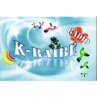 Logo of radio station k-raiberadio
