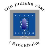 Logo of radio station Shalom 95.3