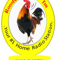 Logo of radio station Rooster Radio - FM