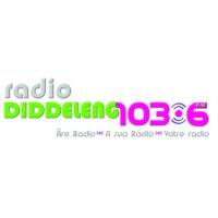 Logo of radio station Radio Diddeleng