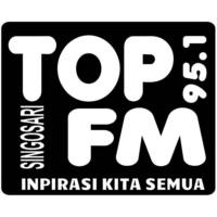 Logo de la radio Top 95.1