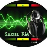 Logo of radio station Sadel FM