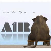 Logo of radio station A1R