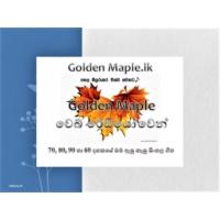 Logo de la radio GOLDEN MAPLE FM